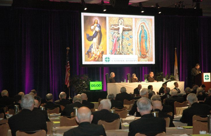 Bishops' voices called 'vital' to fight challenges to religious liberty