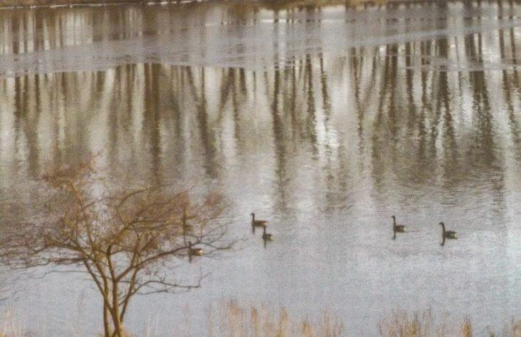 Nature, neighbors make manifest God's care in Donaldson