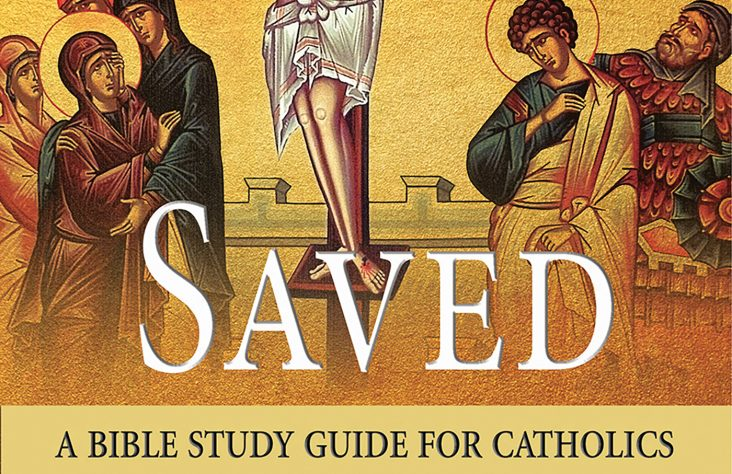 Jesuit's Bible guide can benefit both individuals, study groups