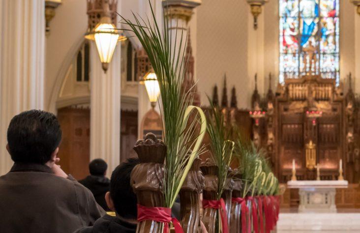 Joyous faithful celebrate Palm Sunday
