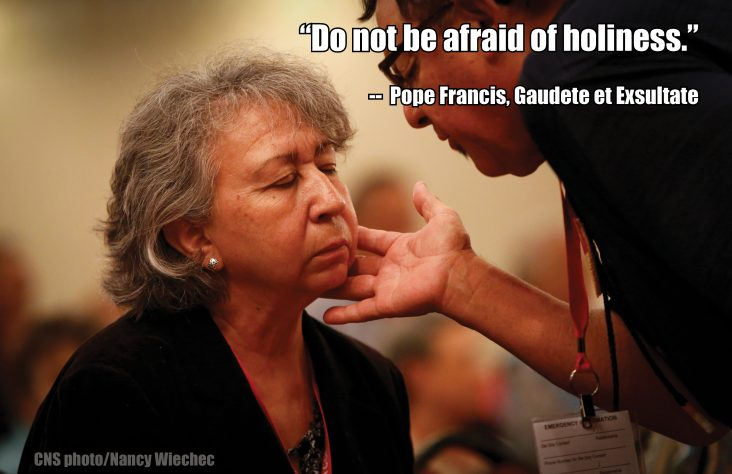 'Do not be afraid of holiness' — 'Gaudete et Exsultate'