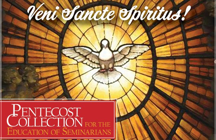 Pentecost Collection for Seminarian Education to be May 20
