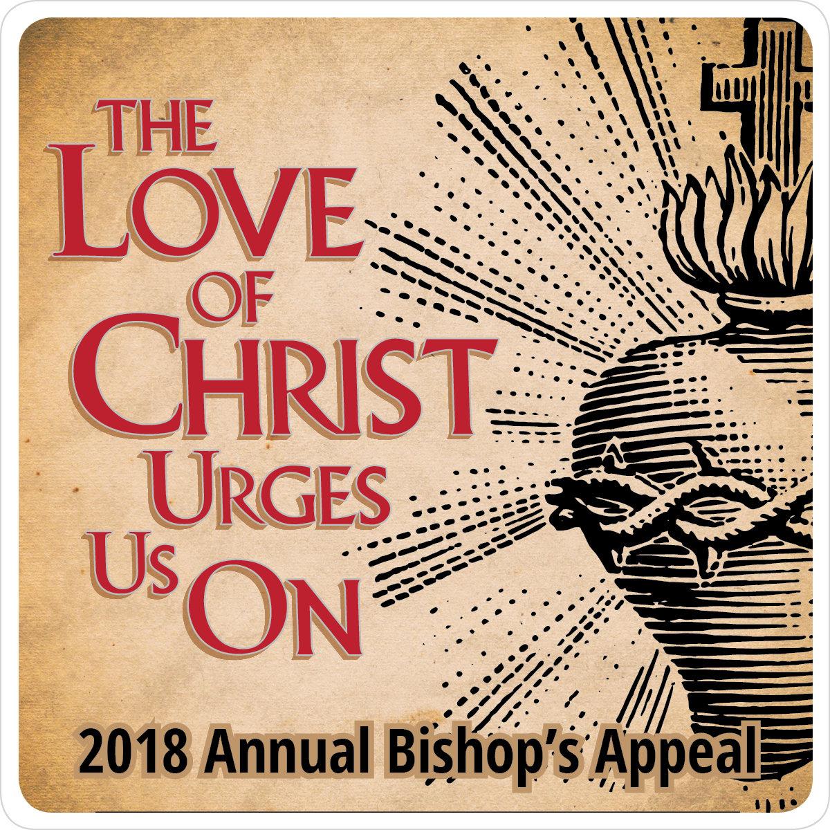 baa bishops annual appeal - HD1200×1200