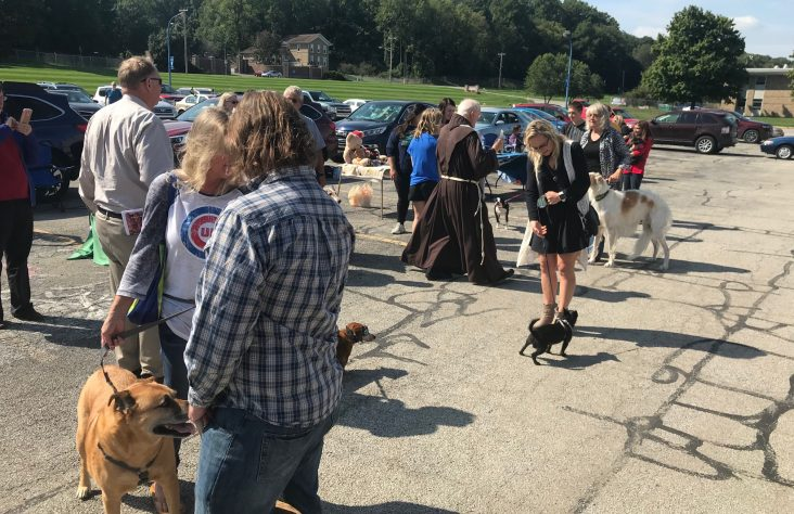 Blessing of the animals celebrates feast day of St. Francis