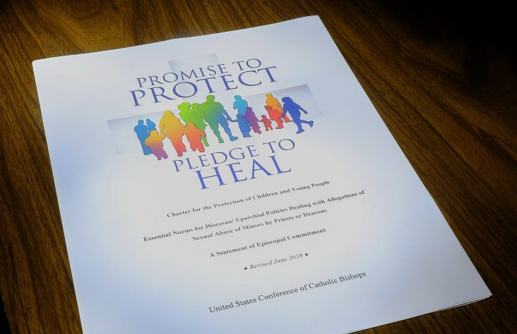 Protocols to address abuse in U.S. dioceses in place since 2002