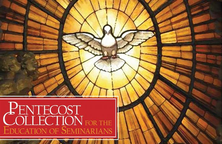 Pentecost collection needs your support