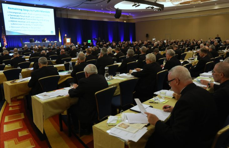 Bishops' actions at spring meeting called a 'work in progress'