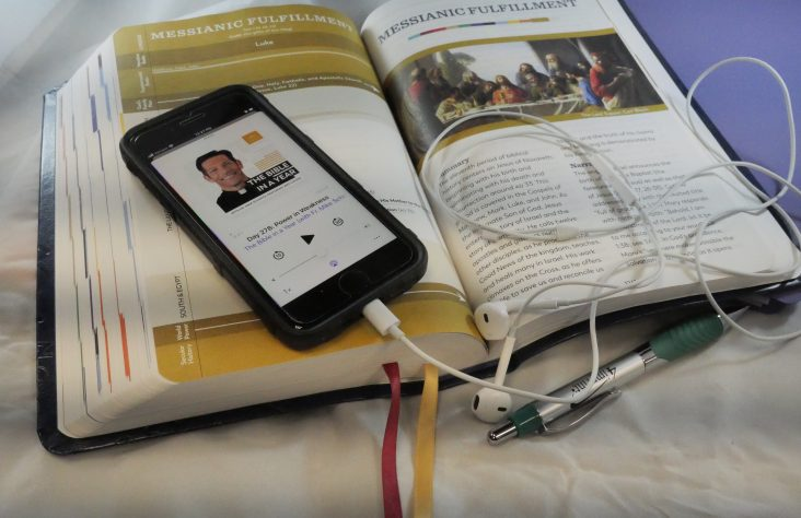 'The Bible in a Year' podcast takes Catholics deeper